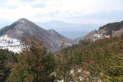 暖かさに誘われての奥武蔵ハイキング②日向山ー県民の森ー芦ヶ久保