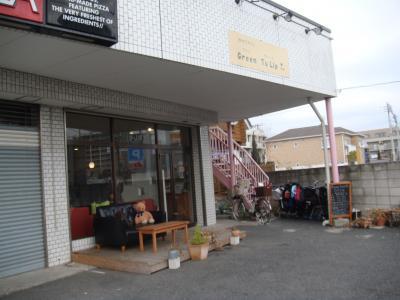 【グリーンチューリップ】(2010年1月29日)