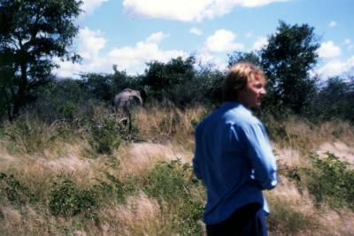 BOTSWANA(ボツワナ)の野良 アフリカ象!