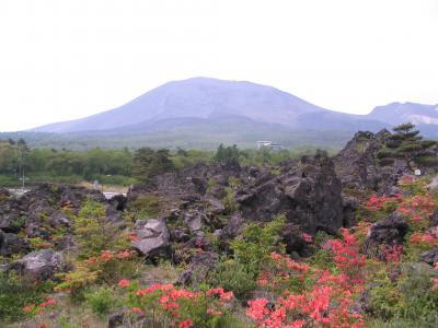 富士山麓から北軽井沢 自然探訪ドライブ 2
