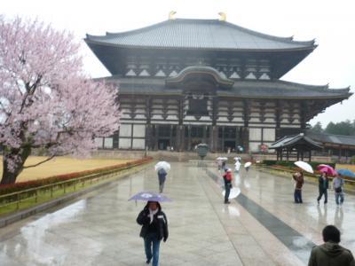 奈良旅行記 桜の東大寺