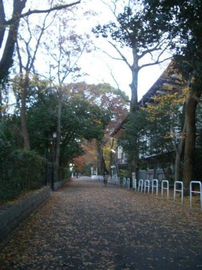 京都日帰りの旅