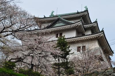 和歌山への旅(和歌山城) - 2010年3月