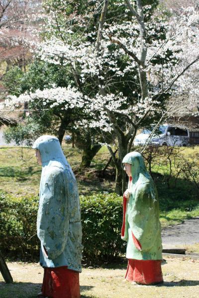 2010春、五分咲の五色園の桜(3):3月30日(3):ソメイヨシノ、ヤマツツジ、レンギョウ、親鸞聖人像