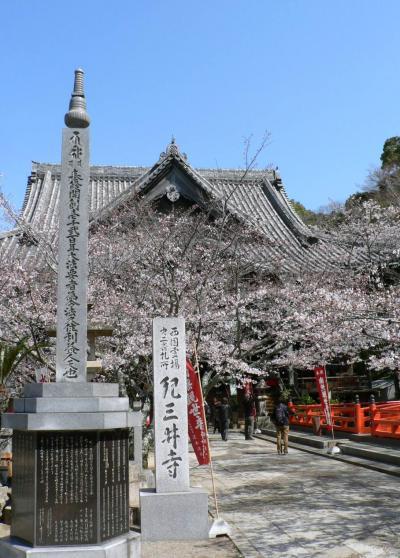日本の旅 関西を歩く 和歌山市、日本さくら名所100選の紀三井寺1