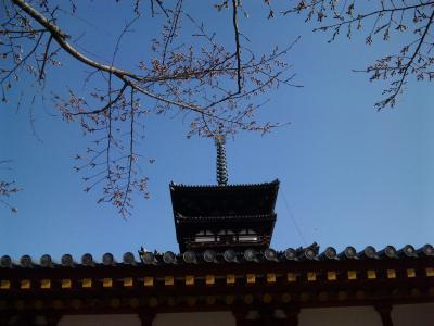 2010年3月 奈良旅行  2日目