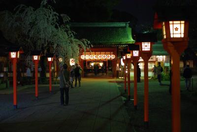 京都の夜桜2010 平野神社