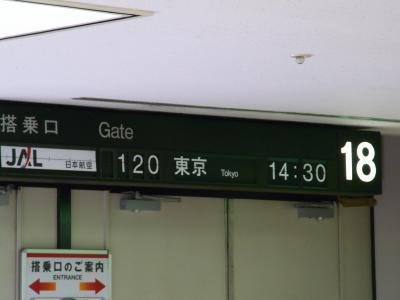 この日もいつものJAL120便で羽田へ