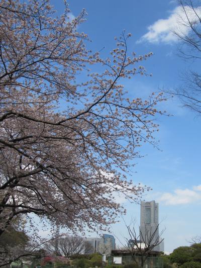 2010卯月 桜と可愛い動物たち・・・そして~