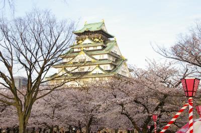 大阪城公園の桜2010