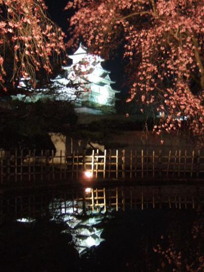 桜が彩る関西お城めぐり② ~姫路城編~