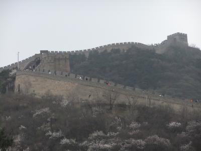 ビギナートラベラーしかも方向オンチ北京への道【万里の長城への現地ツアー申込編】