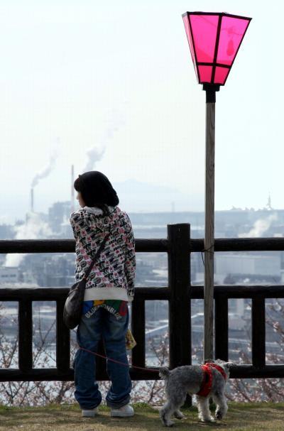 ひとり旅 [710] さくら祭り巡り<大竹亀居城さくらまつり>広島県大竹市