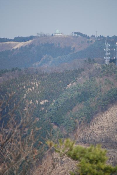 リベンジ! 森の妖精を求めてのハイキング③山の花道~丸山山頂迄(作成中)