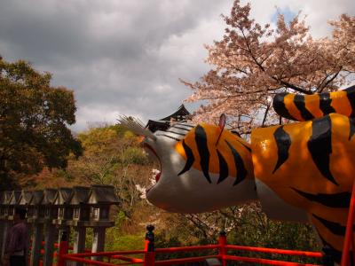 桜満開 寅で有名な信貴山朝護孫子寺へ行こう