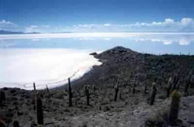 心震えるSalar de UYUNI(ウユニ塩湖)ツアー Part.3<魚の島で見た水平線が空に溶け込んだ世界>