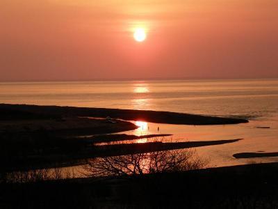 10年4月 道東:海辺の湿原に春を探しに