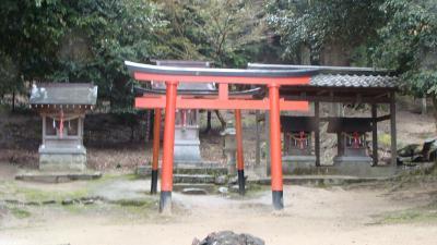 雨の中の白鬚神社