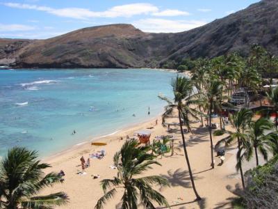 Hawaii/ハナウマ湾での体験ダイビング/3日目
