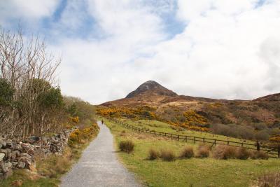アイルランド旅行~コネマラ国立公園 コネマラの宝石を見に行こう!!