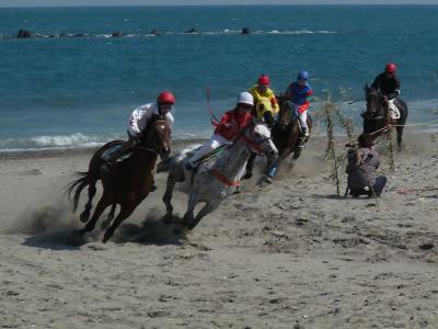 今回も行ってきました、相良草競馬@牧之原市相良サンビーチ