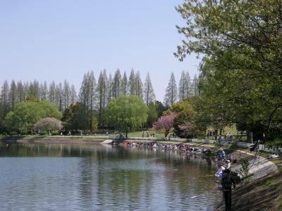 春を探して・・・③水温む久喜菖蒲公園