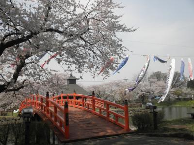 2010 秋田・湯沢の春