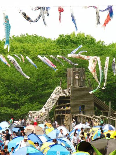 アンデルセン公園-24 鯉のぼり泳ぐみどりの日 ☆花の作品も展示