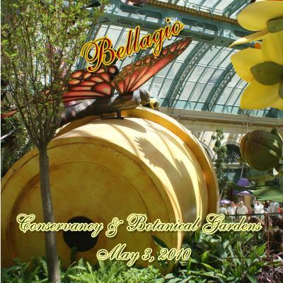 2010 ベラジオの植物園    Bellagio Conservatory & Botanical Gardens