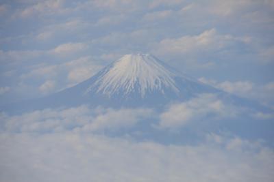 JL828便 上空からの富士山