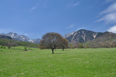 青空に誘われて八ヶ岳牧場でランチ