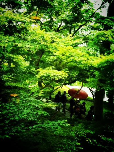 新緑の八芳園お散歩ディナー