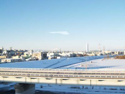 さいたまの雪景色