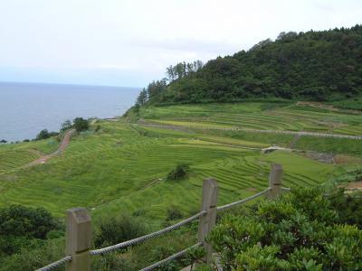 白川郷から能登経由金沢の旅 2  九十九湾から千枚田を眺めて輪島へ