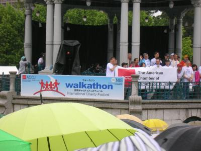 walkathon international Charity Festival 2010
