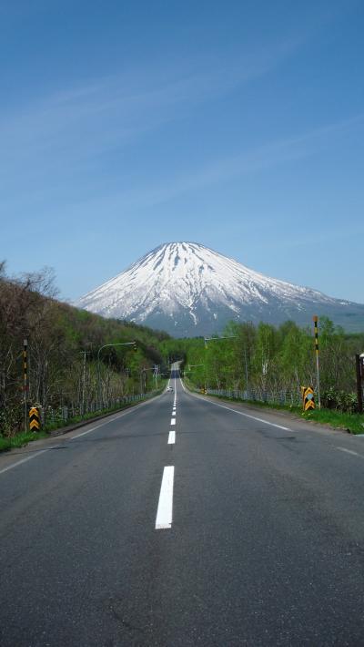 京極へ水を汲みにレッツゴーぜよっ(。・ω・)ノ゙