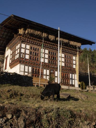 幸福王国ブータン、交流の旅、パロ編