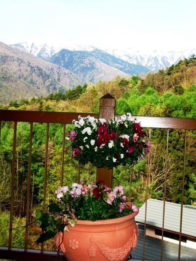 安曇野の高原を早朝散歩して ☆蝶が岳・常念岳は残雪に輝く