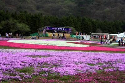 第3回 富士芝桜まつり