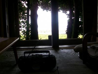 沖縄の市場と商店街をふら~りするために大雨洪水警報の那覇へ 本部のまちぐゎーとフクギ並木の夢ハウス編