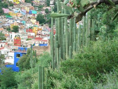 メキシコ高原の旅(6日目 カラフルな街を歩く)