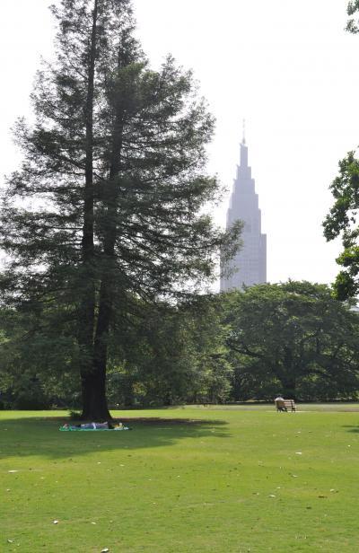 「 6月 昼下がりの新宿御苑 」 散策