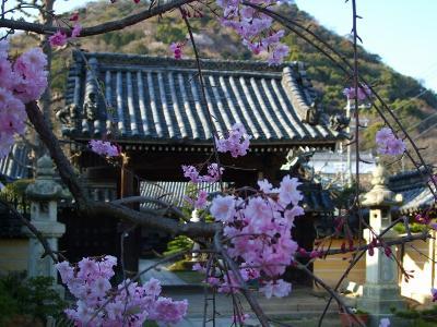 童話の里・龍野は白壁と土蔵の残る小京都!