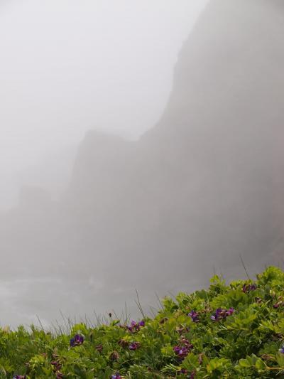 北海道2ヵ月かけて、女一人ドライブ旅、(2) スズラン撮影と襟裳岬