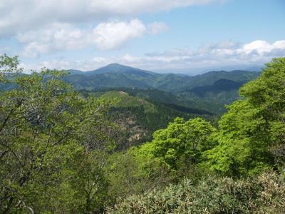 駒ノ尾山からちくさ高原へ縦走 本命はスズコ