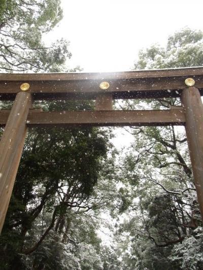雪の明治神宮を散歩する。