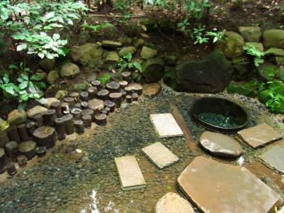 癒しの森、明治神宮にて、パワースポット「清正井」を訪れる。