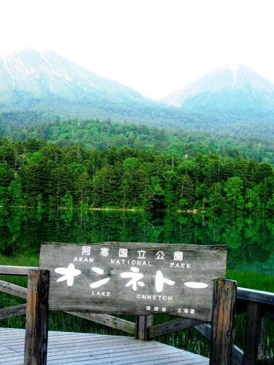 道東-2 オンネトーは阿寒富士を映して ☆静寂な森の奥深く