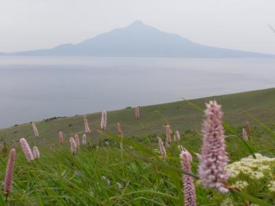 北海道 1 ~礼文島編~ 2008.7.2-7.3