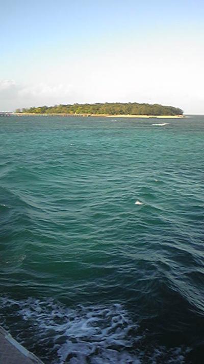 045-グレートバリアリーフ・グリーン島 バーゲンプライス ニューギニア航空で行く ケアンズ 8日間 【Day2】